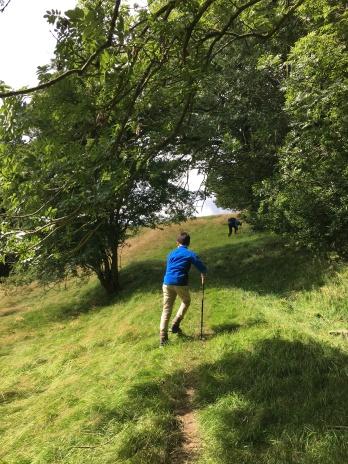 Walking to Hawes